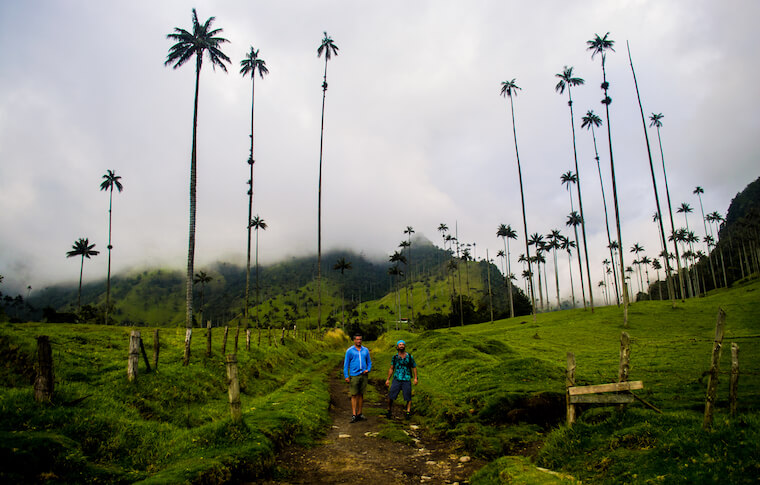 Two tourists with palm trees and mountains in the background